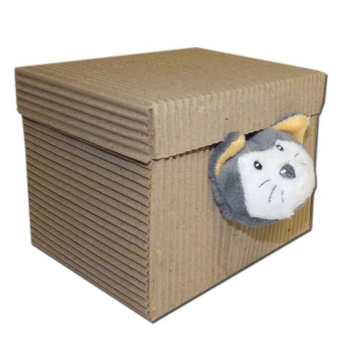 Doudou chat dans sa boite cadeau