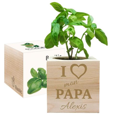 EcoCube personnalisé I Love  Papa