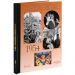 Livre Années Mémoire 1954