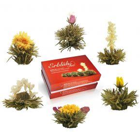 Fleurs de thé magique