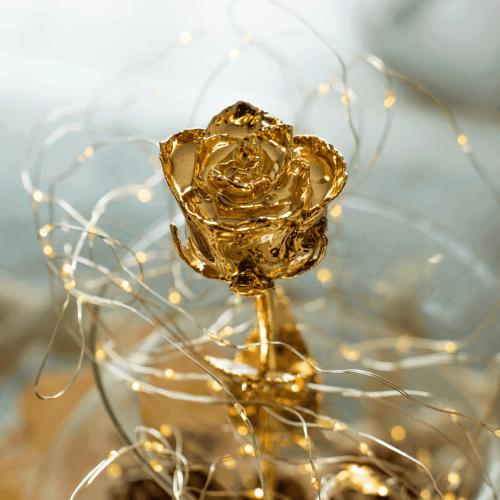 Rose en Or et son coffret gravé