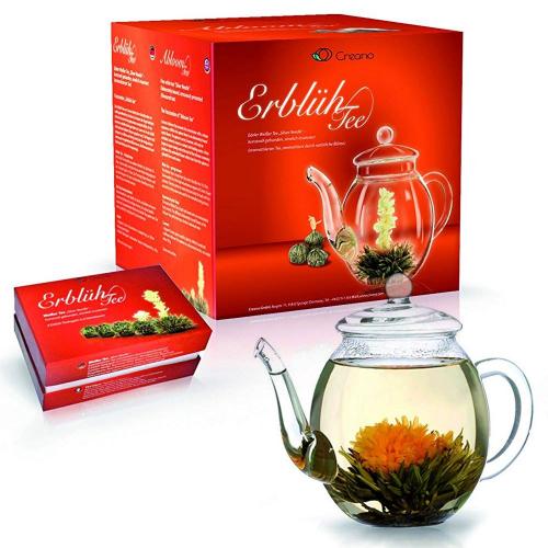 Théière et Fleurs de thé blanc