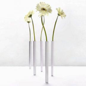 Les cinq vases 'magnetic'